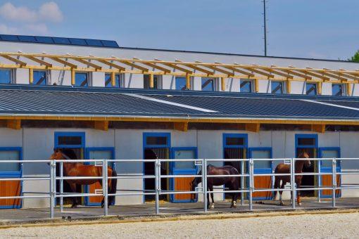 Boxen mit Paddock - Equestrian Centre Austria