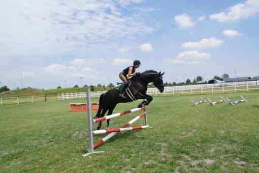 Springplatz - Equestrian Centre Austria