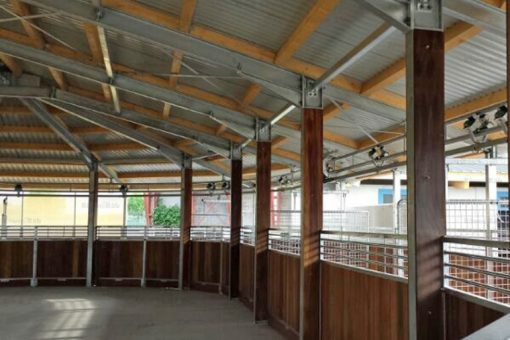 Ovale Führanlage - Equestrian Centre Austria